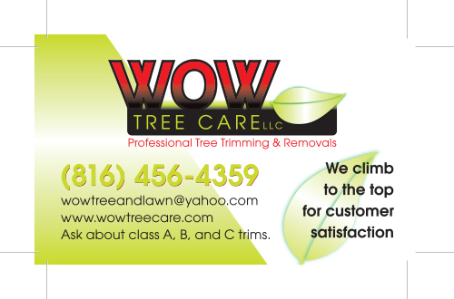 Final Wow Tree Carer Logo Design with Business Card